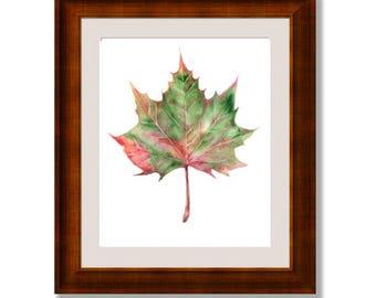 Maple leaf, Autumn Leaf Print, print watercolor painting, watercolor leaf print, Fall watercolor, GREEN leaf print, autumn watercolor prints