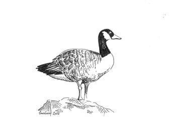 Goose Drawing