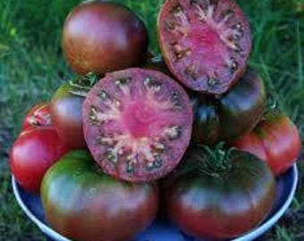 Black Krim Tomato Seeds, FREE SHIPPING, Heirloom Seeds, 40 seeds, Rabbit Rescue Donation
