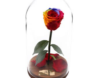 Beauty And The Beast Rose, Live Forever Rose in Glass, Live Infinity Rose, Eternity Rose, Immortal Roses %100 Natural LFR0006