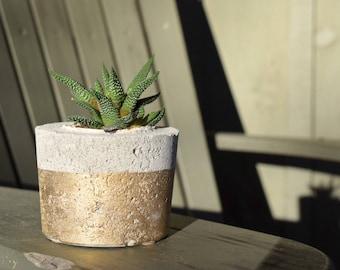 Gold Dipped Concrete Pot
