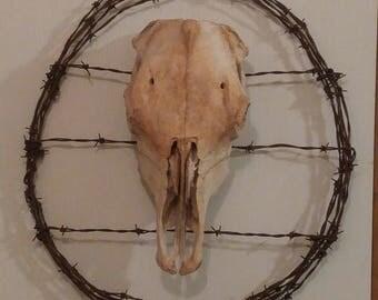 Western Barb Wire Wreath/Wall Art