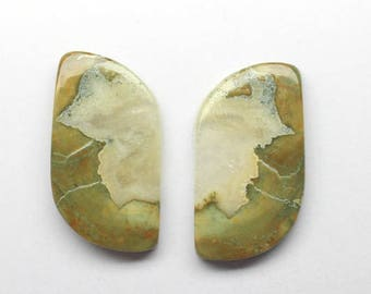 1 Pair, Approx 35Cts. 100%Natural Rayolite, Approx 16X30mm Fancy Shape  Loose Gemstones Smooth Cabochon Gemstones Fine Polish Rayolite Loose