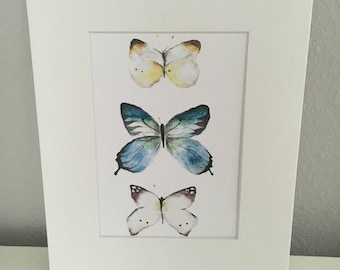 Butterfly Taxonomy Watercolor Print For Home Or Nursery Decor