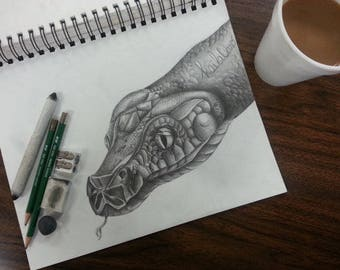 Snake Head Drawing