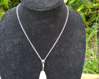 encrusted clam shell necklace