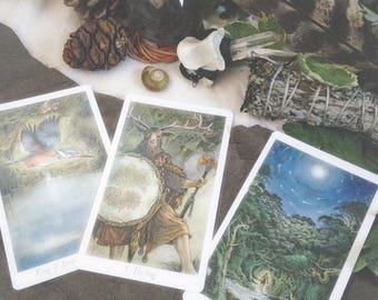 Wildwood Tarot Reading - 3 Card Reading - Divine Insight - Psychic Guidance - Spiritual Wisdom - Fortune Telling - Sent via Email