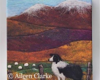 Sheep Dog Collie Box Canvas Print