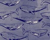 Cotton + Steel S.S. Bluebird - Fred & Carrie - navy - 50cm