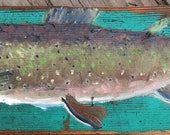 Brook Trout on old wood