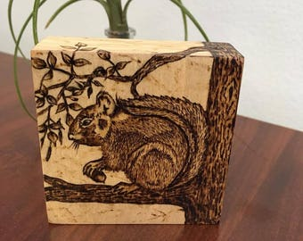 Squirrel On A Limb- Woodburned Art Panel-Pyrography