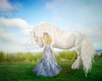 Digital backgrounds  ditigal backdrops  Unicorn   fantasy  Fairytale