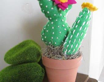 Felt cactus succulent pin cushion plant