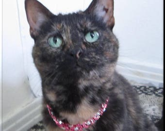 Chainmaille Pet Collar Pink and Silver Byzantine Chain Mail Cat Collar or Dog Collar Pet Jewelry with Breakaway Collar