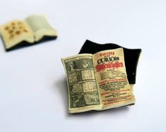 Miniature Open Book --- Curios