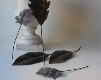 five vintage rusty tin leaves