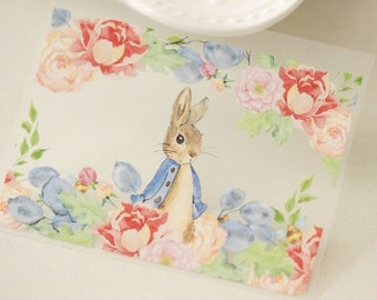 Offset Printing Iron On Transfer - Story Book Fairy Tale Cartoon Characters Rose Garden Peter Rabbit Bunny(1 Sheet, 2 Rabbit Patterns)