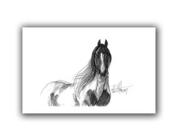 New Mom Pony Gifts Horse Nursery Pinto Wild Horse Art Print Equine Art Drawing  LLMartin Country Farm Artwork