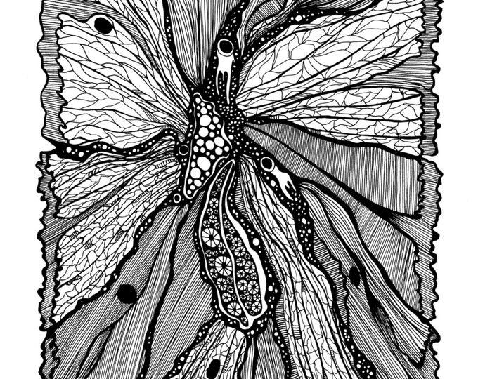 Butterfly Wing Pen & Ink