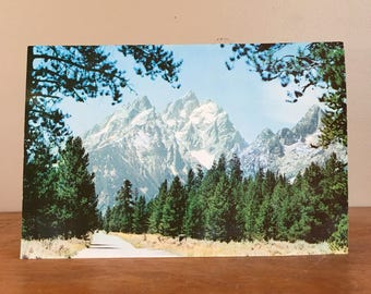"Giant 6"" x 9"" Vintage Postcard. Grand Teton. Teton National Park."