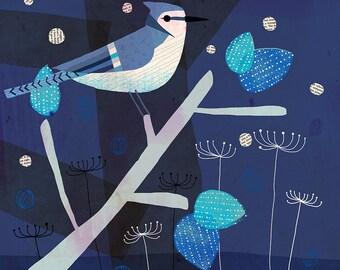 Flora and Fauna-Jay