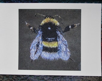 Bumblebee Fine Art Giclee Print