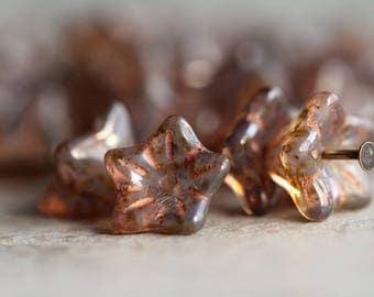 Rustic Brown Picasso flower glass beads, Czech glass 5-petal trumpet flower beads, 8X5mm, Opal glass & Picasso finish (20pcs) NEW