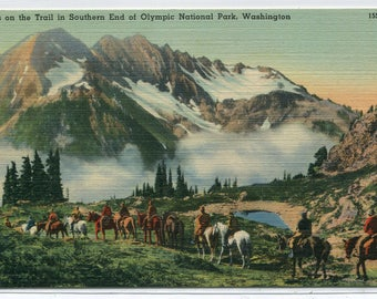 Horse Riders Trail Olympic National Park Washington linen postcard