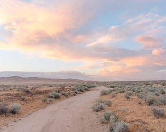 Cotton Candy Sunset in the Mojave Desert - California Landscape Fine Art Photography Print