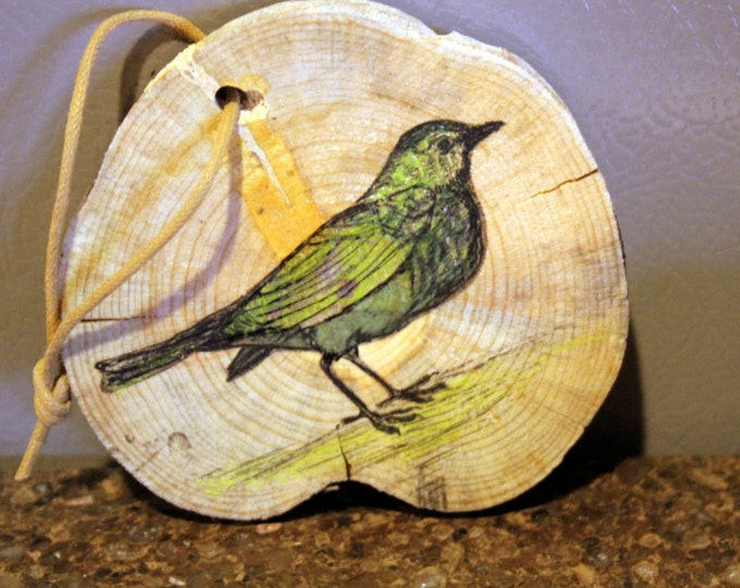 Green Bird Original Prismacolor Painting on Larch Wood
