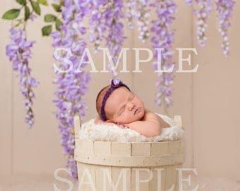 Digital newborn prop flowers