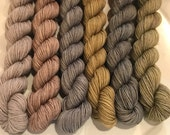 Stones Throw Color Work Set... Canon Hand Dyes John Merino Yarn
