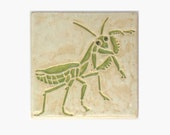 Praying Mantis MUD Pi 4x4 tile