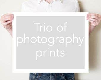 Set of three fine art photography prints. Trio of photographs, any size. Photo series, wall art, home decor. Small / large oversized artwork