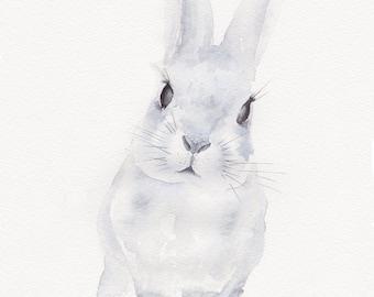 Rabbit watercolour fine art print giclee print 8 x 10 inches nature animals wall decor wall art home decor contemporary