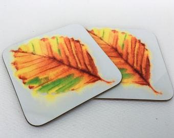 Pretty beech  leaf- 'fagus' coaster