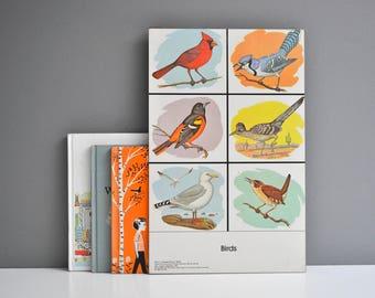 Vintage 1980s Preschool Teacaher's Resource Bird Chart