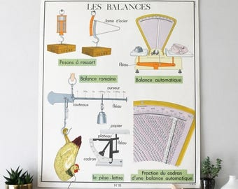 SALE Vintage French Illustration, Scales and Water in Nature , Double Sided Educational Chart