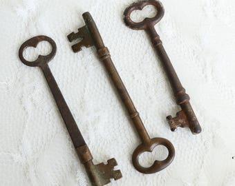 Vintage Skeleton Keys Antique Skeleton Keys Key Collection