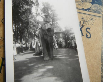 Vintage Snapshot Photo - Elephants on Parade in City Streets - Circus
