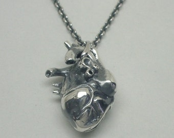Anatomical Human Heart Pendant - Large, Sterling Silver
