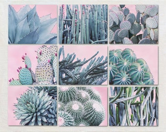 Cactus Photography Set of Nine Prints, Modern Southwestern Decor, Pink and Green Art, Nature Photography, Office Wall Art, Succulent Picture
