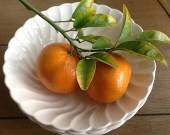 Salem Swirl White Ironstone bowls made in the USA Bone China Glaze Set of five