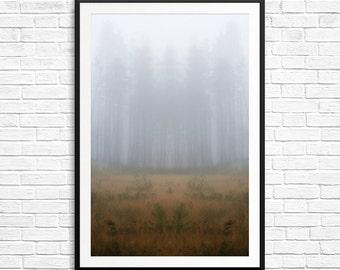 Dreamscape, fog and trees, misty landscape, foggy landscape, landscape photography, surrealism, abstract photography, fine art photos