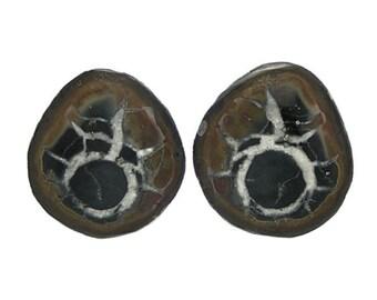 Septarian Ironstone Calcite Nodule Polished Gem Stone Palm Pocket Talisman aka Dragon Stone Natural Concretion African Gemstone