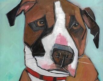 Shelter Dog 19