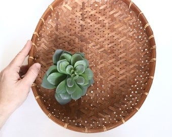 Woeven Basket Tray Wall Hanging