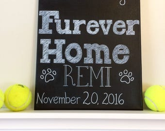 New Pet Announcement On 11x14 Canvas Personalize Name and Date- I Found My Furever Home