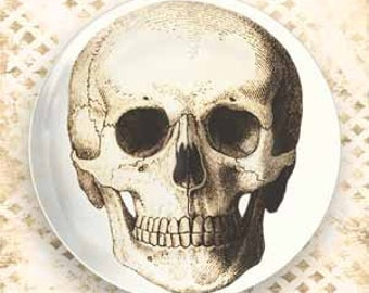 skull melamine plate in brown or black and white