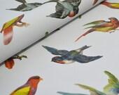Decorative paper - Colourful Birds